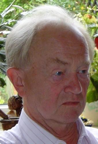 Meinl Franz